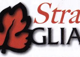 sulle-strade-del-dogliani-logo